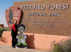 Aaron at petrified forest_lo